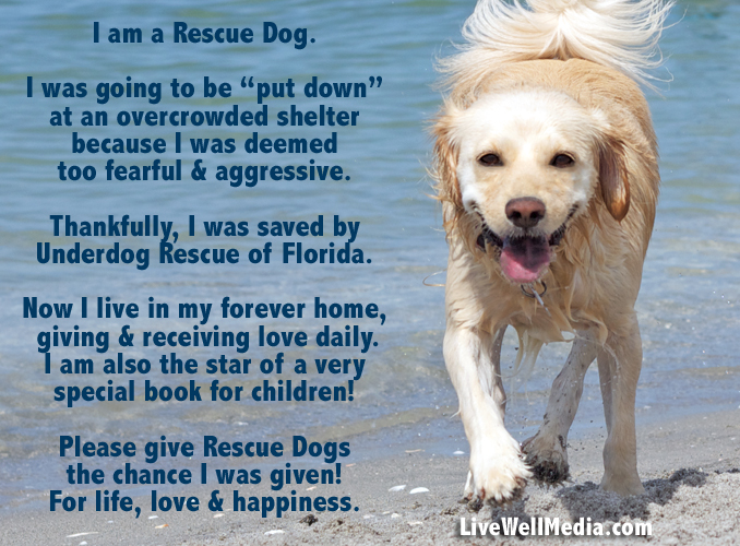 Abby Underdog, Diary of a Rescue Dog