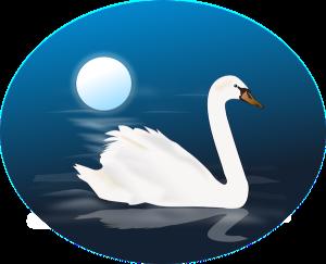Bedtime illustration of swan