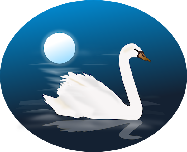 Bedtime / Night-time illustration of swan
